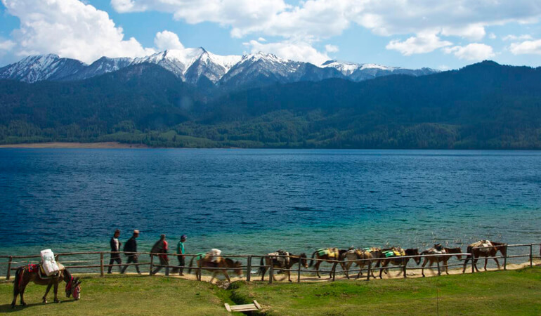 Rara Trekking 15 Days